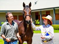 The Impact Magazine: Upcoming Magic Millions Sale