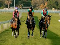 TRACKWORK TUESDAY 6 MARCH 2018