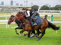 Trackwork Monday 25th January
