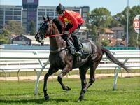 Stare Breaks her Maiden at Seymour
