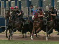 Trackwork Friday 28th February 2020