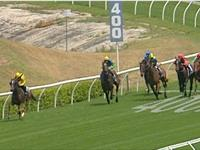 Amanpour Pummels Rivals at Randwick