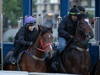 Trackwork Friday 11th October 2019