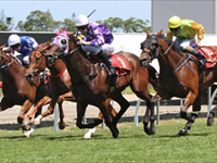 Success at the Magic Millions