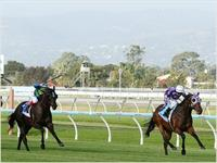 Driefontein Smashes the $2 million mark in the Group 1 Sportingbet Classic