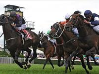 Fiorente Fearless in the Peter Young Stakes