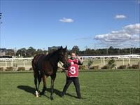 Rule The World Salutes on Debut