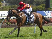 Liberty's Choice is Too Good at Canterbury