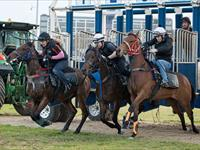 Trackwork Friday 20th November 2020