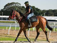 Trackwork Tuesday 26th May 2020