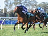 The Waterhouse Team Wage WAR at Warwick Farm