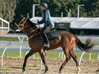 Trackwork Tuesday 22nd September 2020