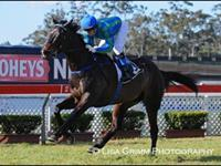 Kontiki Park Wins at Warwick Farm