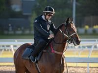 Trackwork Monday 14th September 2020