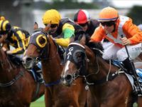 Marseille Roulette proves too good in the Inglis Classic